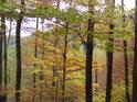 Podzim v Modlivém dole.