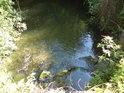 Jen průtočná voda se udrží v lužních podmínkách průzračná.