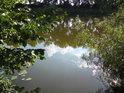 Labe v místě, kde je posilněno vodami z Mydlovarského luhu.