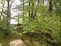 Podzim přichází a Slunce snáz proniká listím.