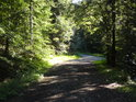 Cesta od Raškova  je ponejprv asfaltová a další odbočka už jen kamenitá.