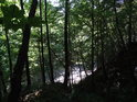 Lesní pohled ze svahu dolů na silnici Železný Brod – Koberovy.