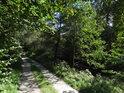 Cesta pod chráněným územím Nad Horou.