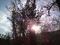 Podzimní Slunce.