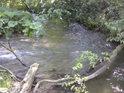 Možná se to nezdá, ale říčka Branná má o dost více vody, než její pravostranný přítok. Přirozený mostík již spojuje spojený tok.