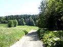 Cesta proti proudu Branné v severovýchodní části území.