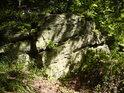 Pukliny v postupně zvětrávající skále osidlují nejen kapradiny, ale i malé stromky.