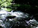 Říčka Branná tu vypadá jako černý potok.