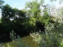 Ne všude je na řeku Svratku dobře vidět.