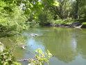 Pohled po proudu řeky Moravy z bývalé přírodní rezervace Novozámecké louky, na pravém břehu můžeme spařit patu obelisku.