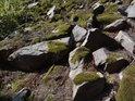 V suťovém poli a slunečního svitu lze tušit zmije.