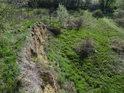 Pohled shora na spodní odkryv a příjezdovou cestu od Kravař.