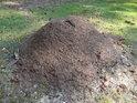 Mraveniště u cesty.