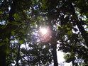 Zvedněme hlavu vzhůru a pohleďme Slunci do očí.