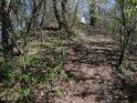 Lesní pěšina pod Otickou sopkou je taková malá hřebenovka.
