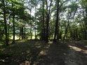 Plácek na kraji lesa ještě v jeho nitru.