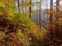 Podzimní bukový les nad údolím Olešenky v Pekle.