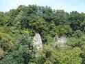 Stromy to mají z živobytím na skalách nesnadné.