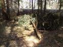 Zima byla krutá zejména námrazami, kdy bylo v okolí polámáno spousta stromů pod tíhou sněhu a ledu.