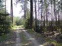 Příjezdová cesta od Horního Jelení.