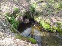 Detail odtoku z rybníka Pětinoha.