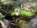 Možná by se díky podivné pěně dalo krapet pochybovat o kvalitě vody.
