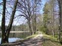 Pohled od jihu po hrázi rybníka Pětinoha, která tvoří jeho východní hranici.