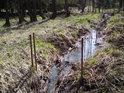 Slabý přítok od západu do rybníka Pětinoha může být snadno přehrazen.