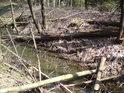 Leží to tu jako dříví v lese, popadané po zimě, co byla krutá na námrazu.