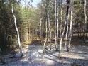 Pohled z nejvyššího místa chráněného území na západní stranu.