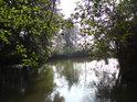V jižní části chráněného území pokračuje Mlýnský potok dále na Olomouc.
