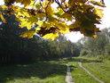 Podzimní pohled na cestu podél Poděbrad.