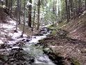 Horský potok má vcelku velký spád, ale přesto tvoří kamennou nivu.