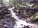 Slunce se třpytí v bystře tekoucí vodě v přirozeném horním korytě horského potoka.