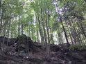 I v prudkých kopcích a skalách mohou být lesy smíšené.