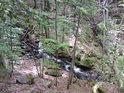 Horský potok se klikatí a o velkých vodách výrazně manipuluje s kameny.