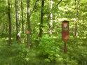Jen úřední cedule dá poznat lesu chráněnému ještě jinak, než okolí.