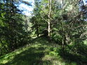 Dobře znatelný terénní lesní hřbet.