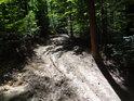 Vyjetá kolej v lesní cestě je od těžkého lesního traktoru.