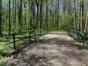 Mostek v Polanském lese.