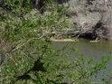 Řeka Odra tvoří východní hranici chráněného území.