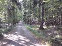 Dolní cesta tvoří jižní hranici chráněného území.