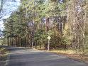 Silnice Rokytno – Chvojenec tvoří jižní hranici přírodní rezervace.