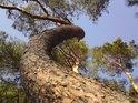 Galerie fotografií přírody se zaměřením na maloplošná chráněná území