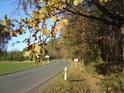 Poněkud popisná informace o silnici Rokytno – Býšť, která tvoří západní hranici přírodní rezervace.