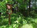 Úřední cedule v přítmí lužního lesa za plného slunečního svitu.
