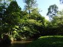 Jsme zhruba uprostřed chráněného území, pravobřežní náhon Chrudimky to má ještě kousek do mateřské řeky.
