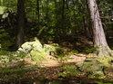 Přírodní rezervace nedaleko města Javorník