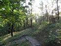 Cesta ze severu na Radobýl je úvraťová.