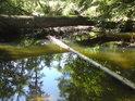 Slepé rameno řeky Moravy lze překonat hned po dvou přirozených lávkách. Každá je v jiné výškové úrovni.